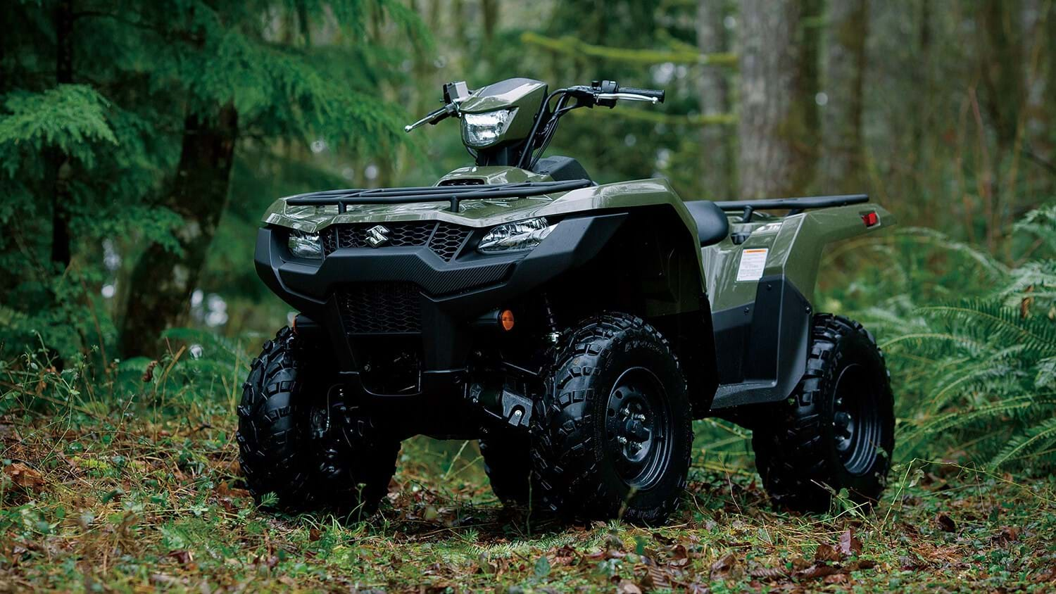 Suzuki green KingQuad