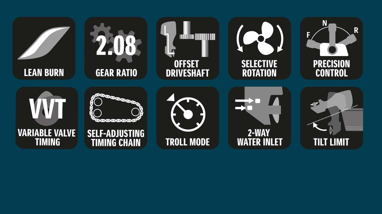 DF300AP technical details